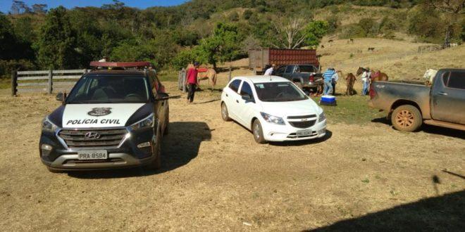 Polícia Civil recupera 157 cabeças de gado adquiridas mediante golpe
